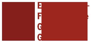 EFG Gerolstein